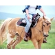 Phyto muscles pour Chevaux