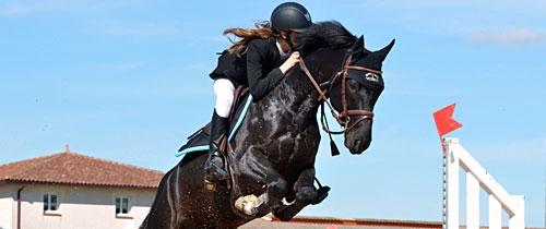 Promo Phyto Sport pour le cheval