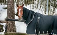 Le système immunitaire du cheval